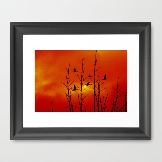Go South! Framed Art Print A flock of geese passing the sun on its flight to south  nature, sky, clouds, red, orange, birds, silhouettes, winter, sun, travel, bird migration, limbs, naked tree, animal