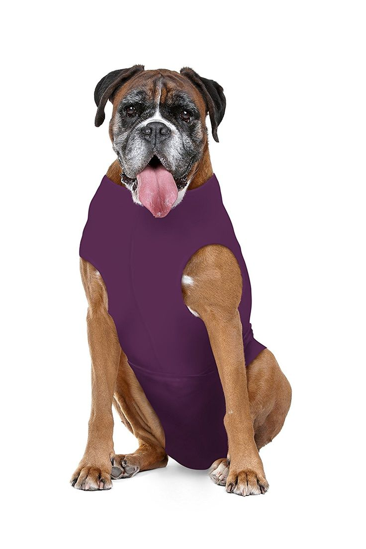 The Original Soft E Collar Alternative, Protects Wounds, Aids Hot Spots and Provides Anti Anxiety Relief * Made In America* (Large Short, Plum) *** Check this awesome image  : Cat Supplies