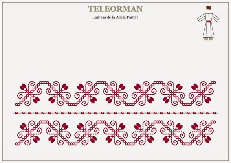 Semne Cusute: cale ocolita de Teleorman