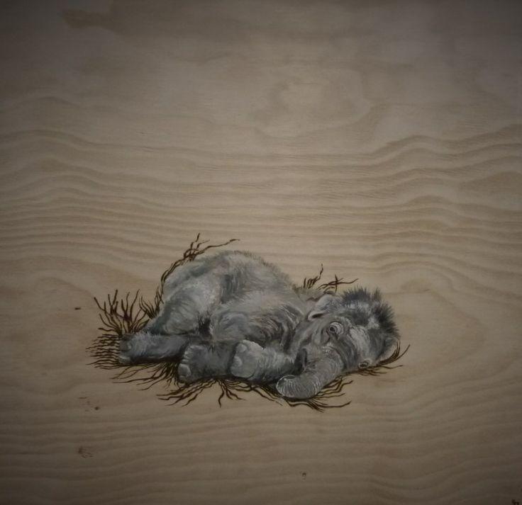 Baby Elephant in Nest
