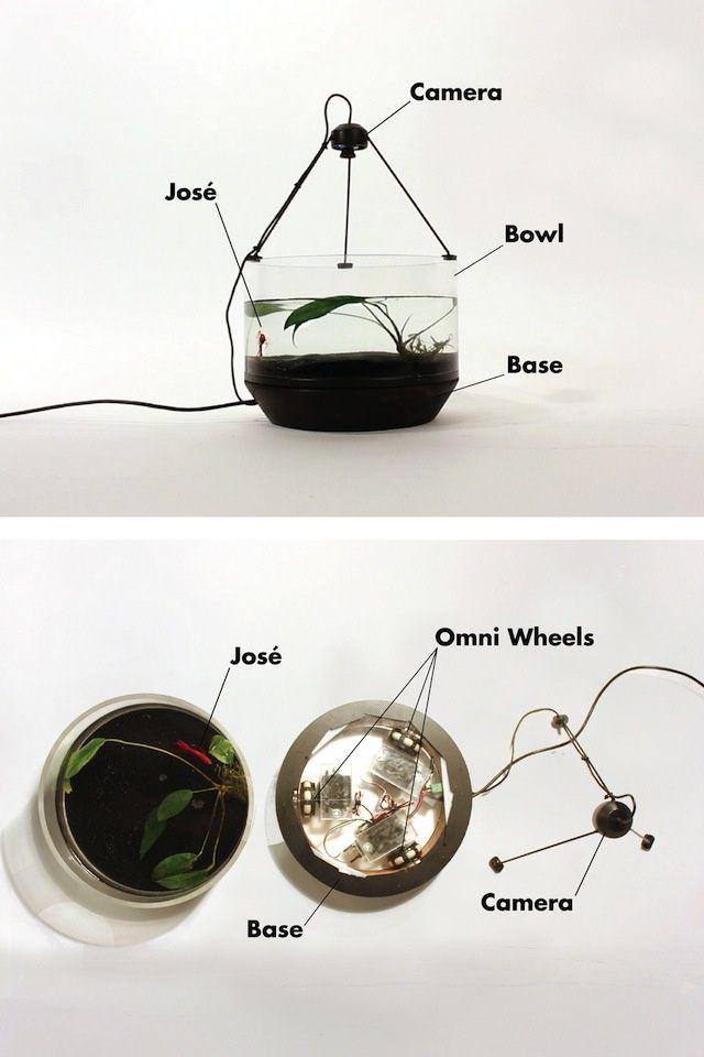 Dieses mobile aquarium bewegt sich in schwimmrichtung des - Selbstgemachte mobel ...