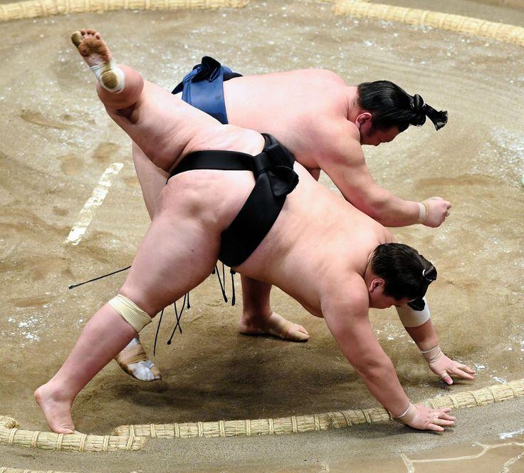 勢が大関照ノ富士を撃破「前へ前へという相撲がとれた」 デイリースポーツ #相撲