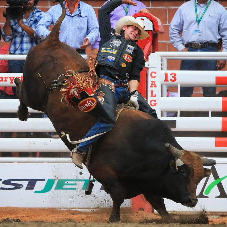 Image result for bull riding hotties