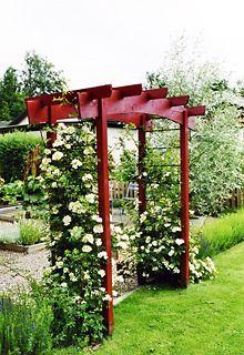 Trädgårdssnickarens rosportaler