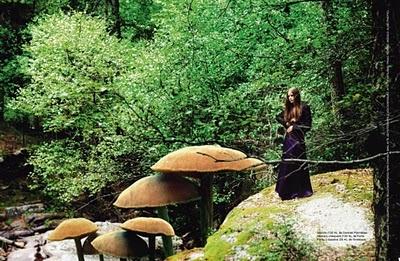 John Galliano-: Giant Mushrooms, Style Amor, Ragazza Magazines, Su Shoes, Magazines Ragazza, Alice Parties, Alice In Wonderland, Spanish Magazines, Magazines Photographers