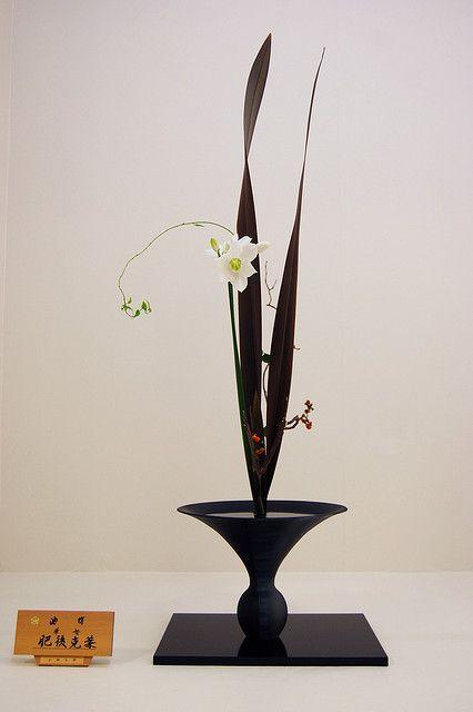 Shoka style by Otomodachi