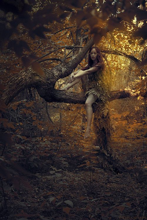 3foldlaw: Woodland Nymph Ilona Nelapsi | CRIATURAS DEL ...