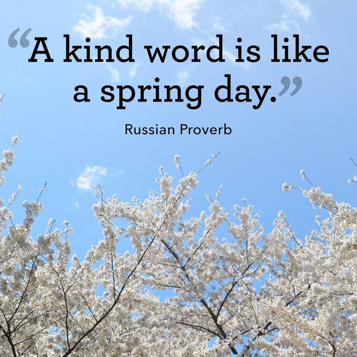 Inspirational Spring Quotes And Sayings: 17 Best Images About Spring On Pinterest