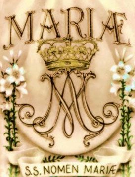 What does the Holy Name of Mary Mean? Saints Jerome & Bonaventure tell us!Ave Maria, Religious Images, Mothers Mary, Hail Mary, Saint Jerome, Blessed Virgin, Virgin Mary, Blessed Mothers Crafts, Things Catholic