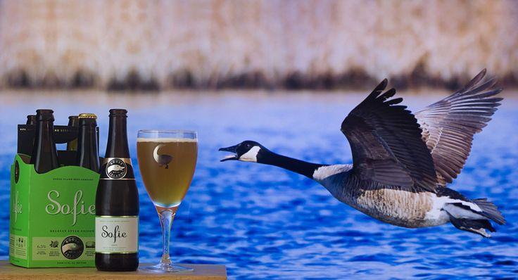 "Sofie (Goose Island Beer Co - Etats-Unis) -  via ""Saveur-Biere.com"" -  Oie cendrée du Canada"