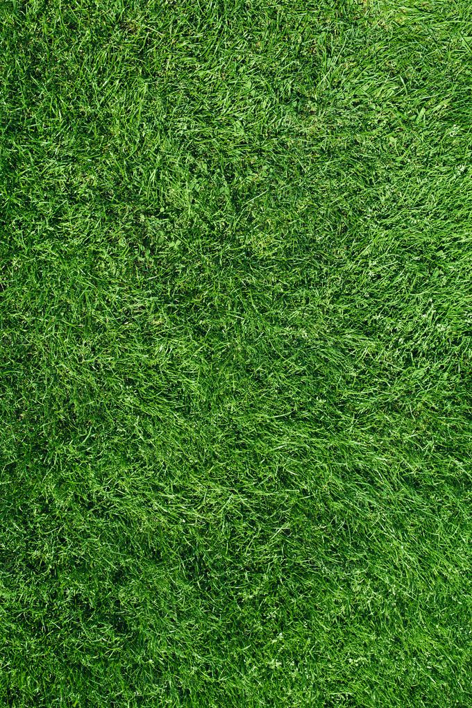 Cute Fall Wallpapers Pinterest Grass Field Top View By Alexzaitsev On Creativemarket In 2019