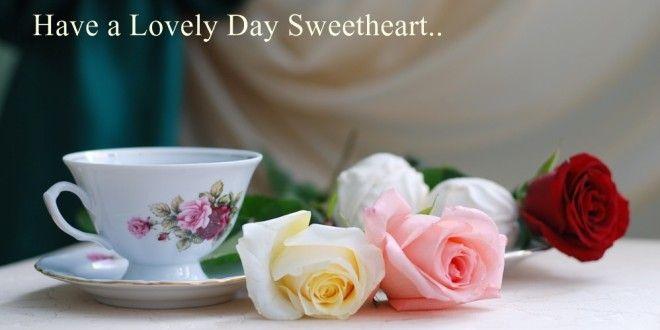 Good Morning Roses Download : Good morning rose wallpapers free download love