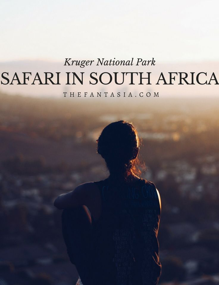 I went on a safari, saw the big 5 in 2016 and LOVED it! I went to the world-famous Kruger National Park in South Africa and I'm sharing my experience with you today!