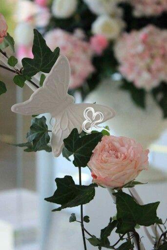 #flowers #flower #toptags @top.tags #petal #petals #nature #beautiful #love #pretty #plants #blossom #sopretty #spring #summer #flowerstagram #flowersofinstagram #flowerstyles_gf #flowerslovers #flowerporn #botanical #floral #florals #insta_pick_blossom #flowermagic #instablooms #bloom #blooms #botanical #floweroftheday