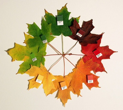 Chris Glass - Autumn Pantone (2012)
