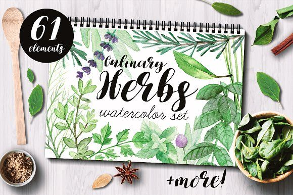 Culinary Herbs Watercolor Set by Bibela on @creativemarket - I am very happy to introduce to you the Culinary Herbs Watercolor Set. It has been hand painted with watercolor. All the elements are plants you could find in your kitchen garden: parsley, dill, chive, lavender, bay leaves, thyme, sage, rosemary, rucola, basil, mint. You will also find premade, ready to use compositions (wreaths), backgrounds and patterns. This set is perfect for food-themed designs like packaging & restaurant…