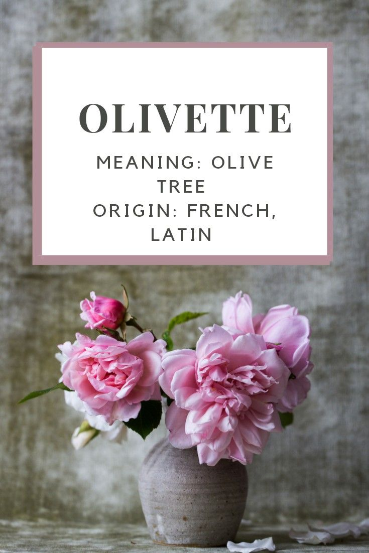 Baby Girl Name Olivette Meaning Olive Tree Origin French