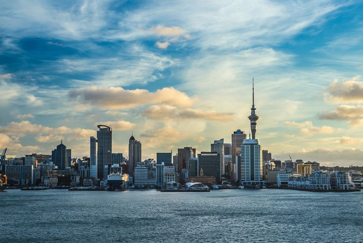 The Yogi's Guide to Auckland, New Zealand