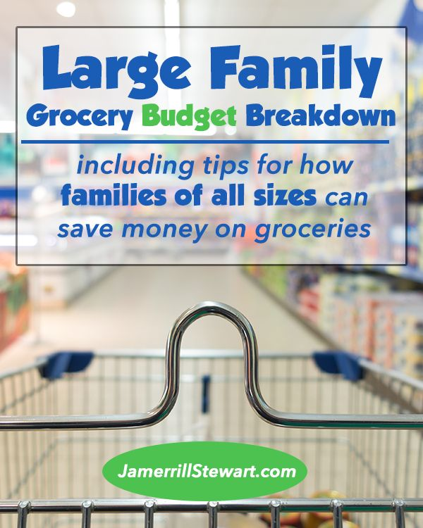 Large Family Grocery Budget Details