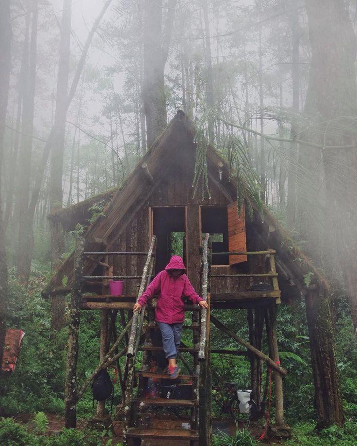 """""""Little wooden house in the middle of forest  .  Rumah Pohon ini ada di tengah-tengah hutan Kareumbi. Disewakan juga untuk pengunjung yang mau menginap…"""""""
