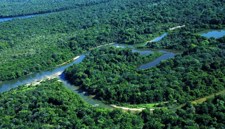FOTOS: Isla de Bananal, un fascinante destino brasileño para los amantes de la pesca deportiva