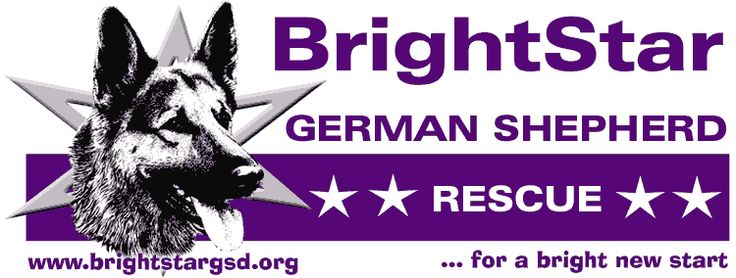 ... NY | GSD Rescue | Pinterest | German Shepherd Rescue, German Shepherds