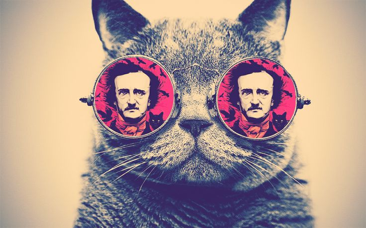 Nevermore Cat