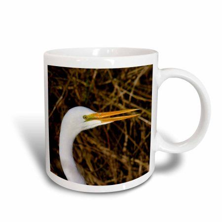 3dRose Great White Egret, Commonwealth Lake Park, Beaverton, Oregon, USA., Ceramic Mug, 15-ounce