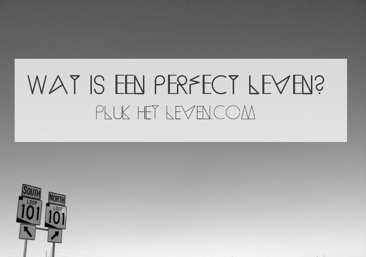 Wat is een perfect leven? - http://plukhetleven.next-chapter.nl/wat-is-een-perfect-leven/