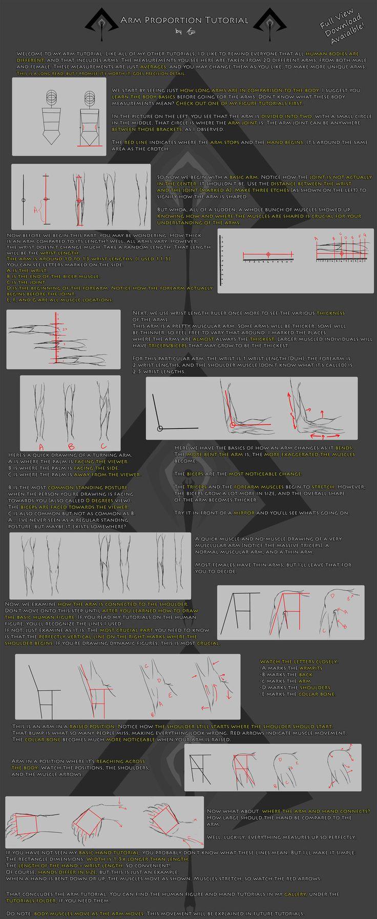 Arm Anatomy Tutorial by Jeff-H on deviantART
