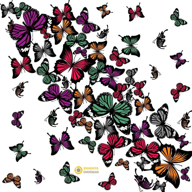 Butterfly Print Cotton Scarf  For inquiry info@bhaghyaoverseas.com  Bhaghya Overseas Jodhpur