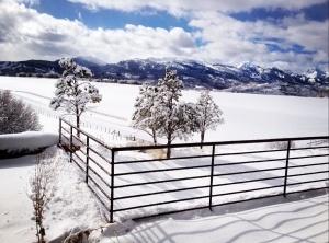 Aspen, Colorado - Winter Wonderland