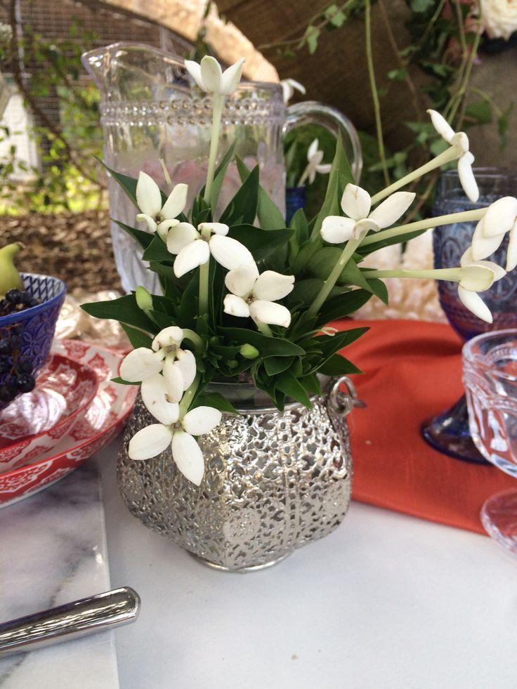 Bouvardia flowers displayed in pressed metal vase on Bohemian table