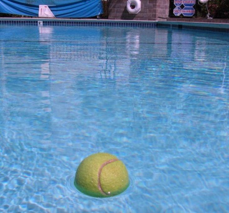Aussitôt que les nageurs sortent de sa piscine, il lance quelques balles de tennis dans l'eau. La raison est étonnante! - Trucs et Bricolages
