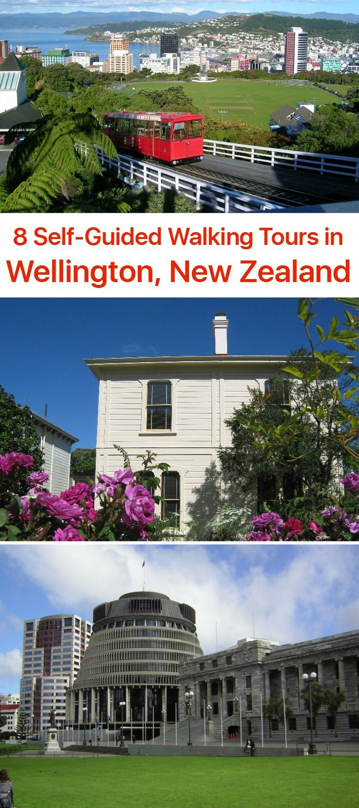 22 best wellington new zealand images on pinterest new for House sitter wellington