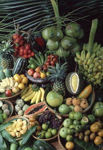 exotic fruit - coconut, banana, mangoes, papaya...etc, etc, etc...