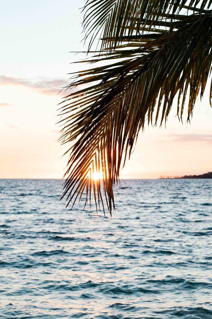 A beachy Life ... : Photo