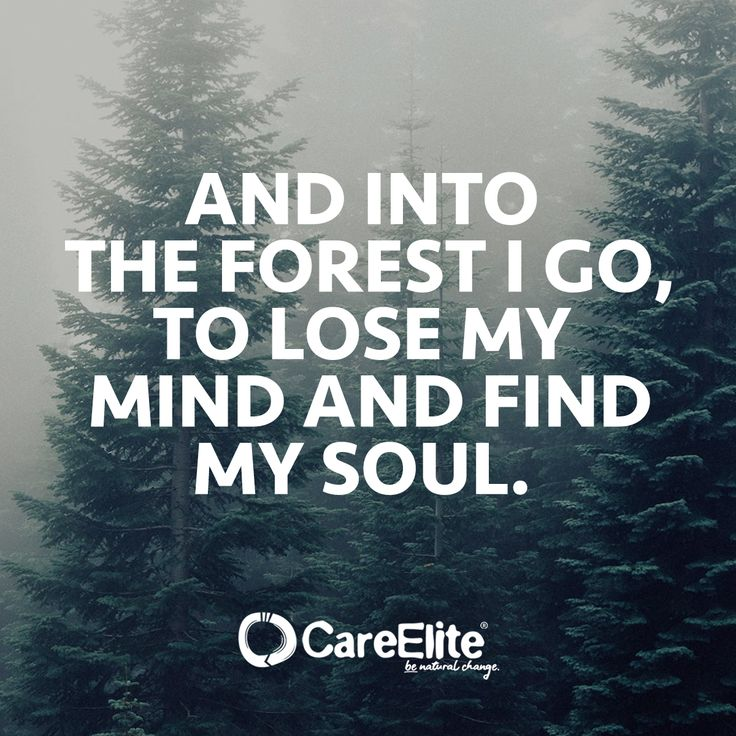 """""""And into the forest I go, to lose my mind and find my soul."""" Inspiration Quote CareElite   """"Und ich gehe in den Wald, um meinen Verstand zu verlieren…"""