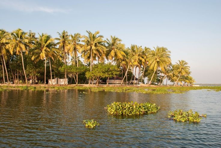 #VismayaLakeHeritage #Kerala #GodsOwnCountry #Beautiful #RoomView #BackWaters #PalmTrees #CalmWaters #LuxuryTravel #Heritage #Resort