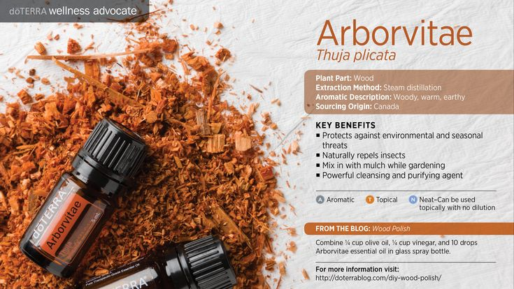 doTerra Power Point Image - Single Oil - Arbovitae