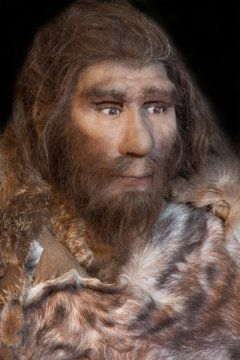 Study Suggests Interbreeding Helped Modern Humans Adapt