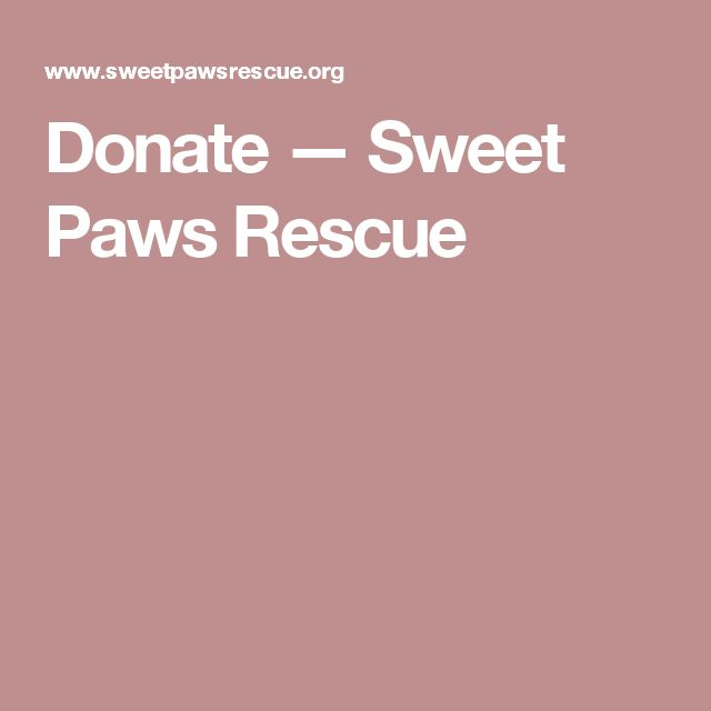 Donate — Sweet Paws Rescue