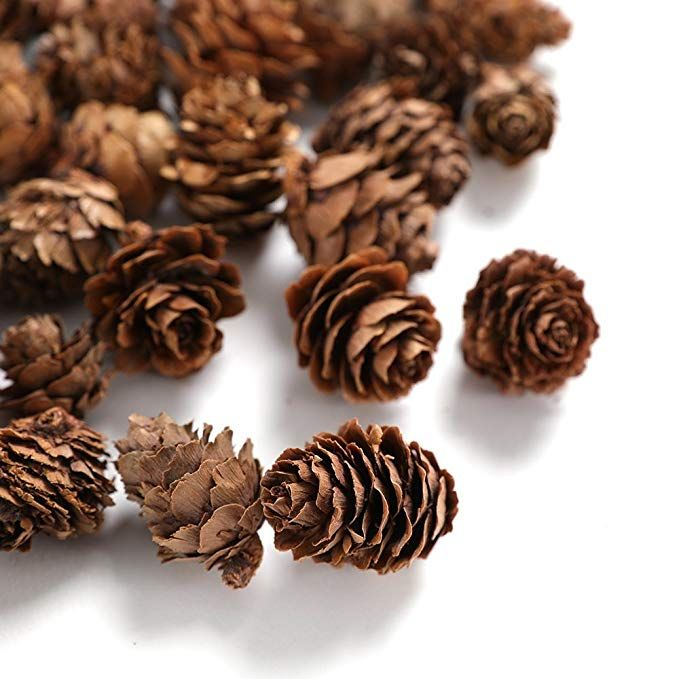 Amazon Com Pine Cones Byher Mini Pinecones In Bulk For Crafts 8oz Pack Of 110 Natural Affiliate Pine Cone Crafts Cones Pine Cones