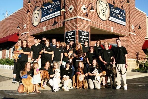 Downtown Indianapolis Dog Training
