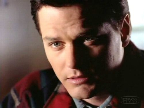 261 best images about Due South Paul Gross on Pinterest