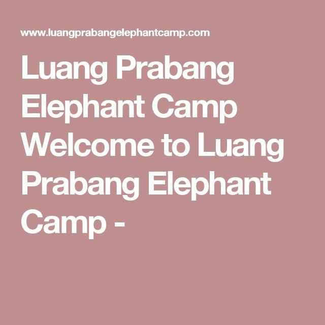 Luang Prabang Elephant Camp Welcome to Luang Prabang Elephant Camp -