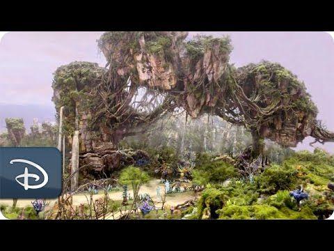 A sneak peek of the work being done to bring #DisneyAVATAR to life at Disney's Animal Kingdom: