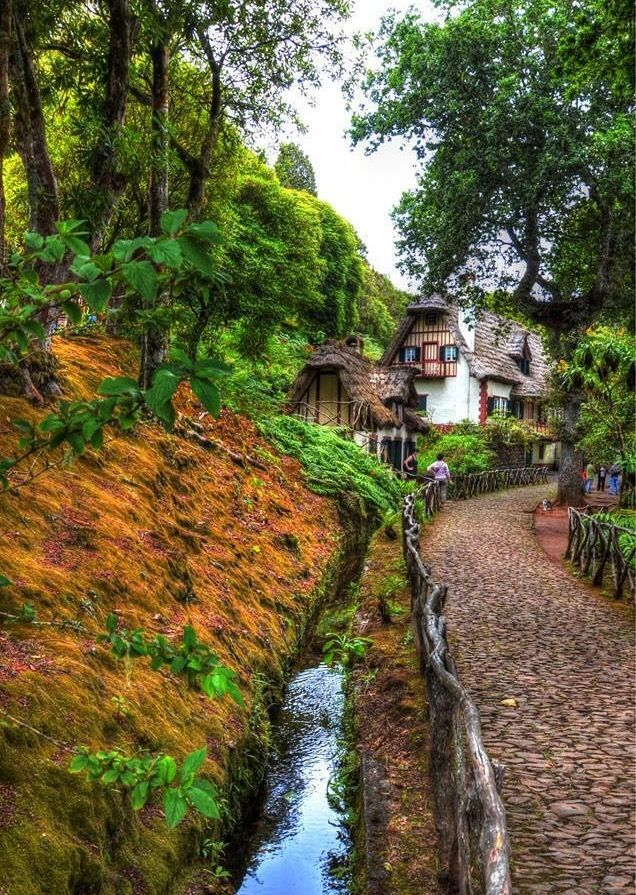 Here would be an abode of peace in the affluence of poetic thoughts.  Madeira levadas.