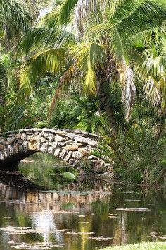 McKee Botanical Garden Is A Community Park In Vero Beach. Plan Your Road  Trip To McKee Botanical Garden In FL With Roadtrippers.