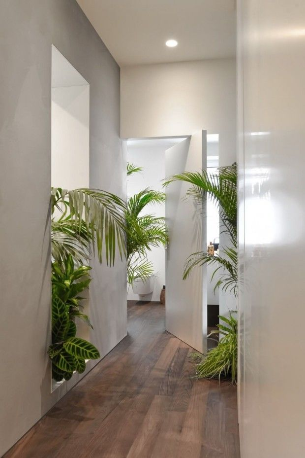 AIM Studio - Plantes, jungle, parquet bois